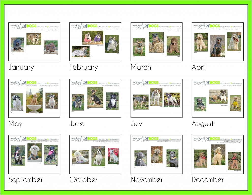 2015 West Loop Dog Calendar - Green
